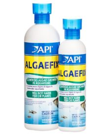 api-algaefix-for-freshwater-aquariums