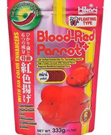 Hikari Blood Red Parrot Floating