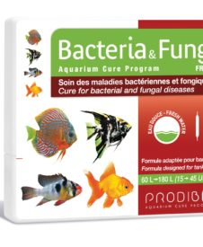 Bacteria & FungiFresh